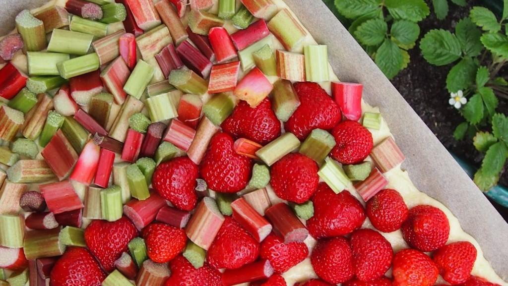 puszysty placek drożdżowy z rabarbarem i truskawkami